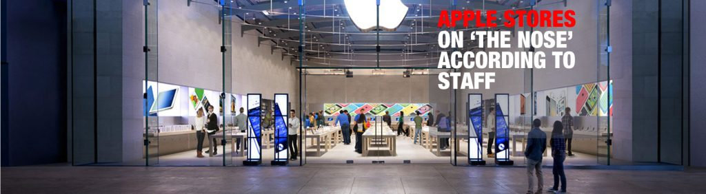 Capacity Web Solutions Pvt. Ltd.Apple-Stores-Nose